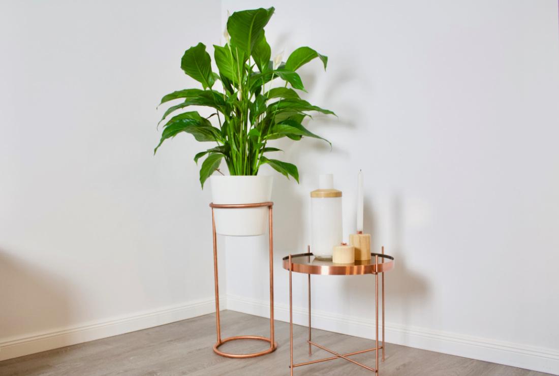 pflanzenstaender-kupfer-selber-bauen